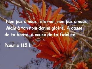 Psaume 115.1..