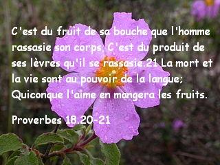 Proverbes 18.20-21.jpg