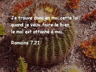 Romains 7.21