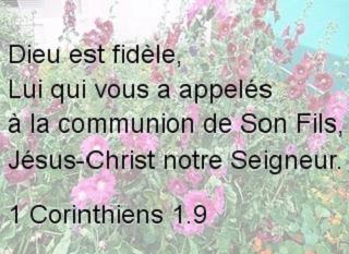 1 Corinthiens 1.9