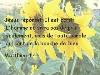 Matthieu 4.4.