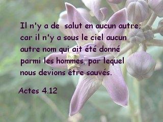 Actes 4.12