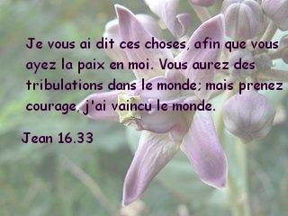 Jean 16.33