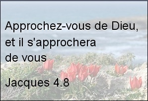 jacques-4-8.