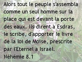 nehemie 8.1