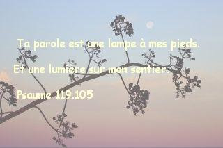 Psaume 119.105..
