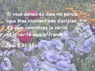 Jean 8.31-32