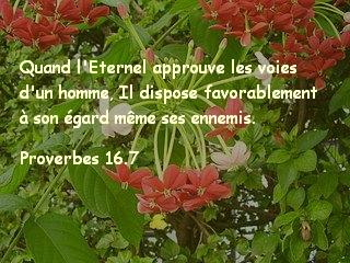 Proverbes 16.7